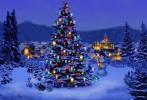 Открытие главной республиканской елки пройдет 24 декабря