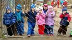 Чи бахордта детский сад