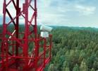 «Лесной дозор»