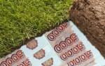 Тысячу рублей за га