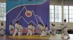 Мир в кимоно