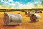 Незаконная субсидия