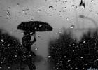 Дожди, дожди