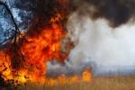 Высокая пожароопасность