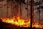 Чрезвычайная пожароопасность