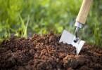 Грязная почва