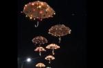 """Ардонские зонтики"""