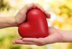 Готов отдать свое сердце